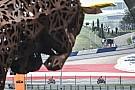 Spielberg MotoGP: Cumartesi'nin en iyi fotoğrafları