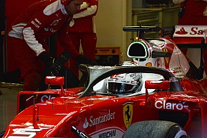 Формула 1 Новость Ferrari продолжает испытания системы Halo