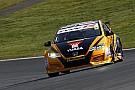 Brands Hatch BTCC: Shedden wins race two amid late drama