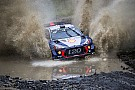 WRC Thierry Neuville: