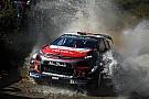 WRC Nagyon látványos képek a Mexikói Raliról: Loeb visszatért
