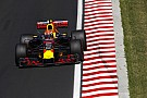 Formula 1 Webber says Verstappen is
