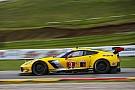 Corvette continuará con sus pilotos en IMSA para 2018