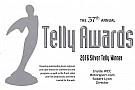 Motorsport.com здобув декілька нагород Telly Awards за найкраще веб-шоу
