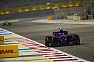 Успех Toro Rosso в Бахрейне показался Хартли несвоевременным
