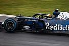 Відео: аналіз нового боліда Red Bull RB14