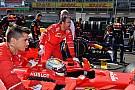Ferrari опинилася під тиском - Хемілтон