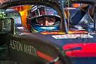 Formule 1 Red Bull 2019: Wie wordt de teamgenoot van Verstappen, indien Ricciardo vertrekt?