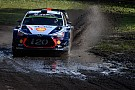 【WRC】ポーランド最終日:ヌービル今季3勝目。ラトバラ5ポイント獲得