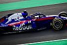 Hartley: Honda 2018'de F1 dünyasını şaşırtacak