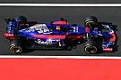 Formula 1 Toro Rosso expecting