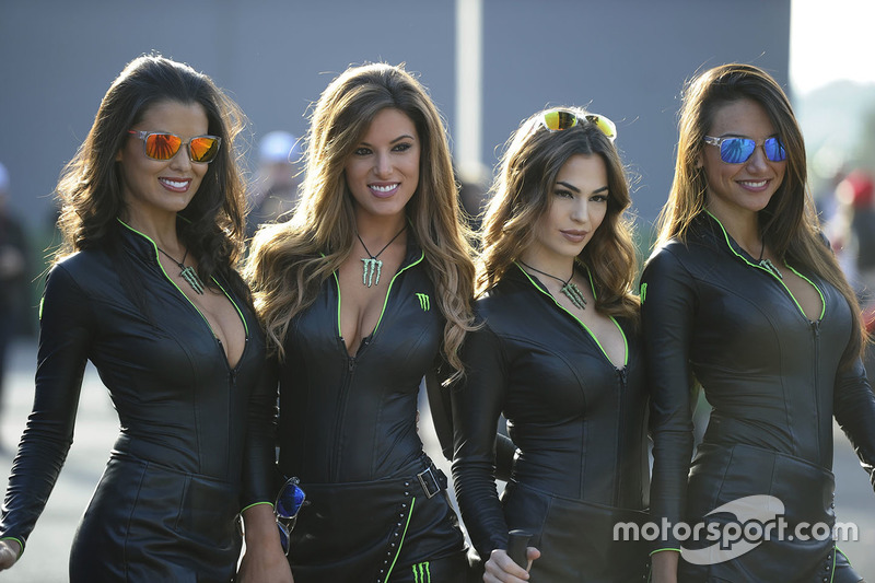 hot monster energy girls at valencia gp on november 13th 2016. Black Bedroom Furniture Sets. Home Design Ideas