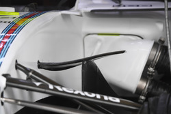 Williams FW40: Winglet