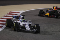 Felipe Massa, Williams FW40, Daniel Ricciardo, Red Bull Racing RB13