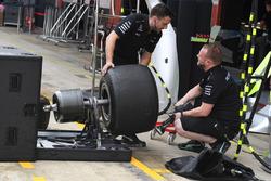 Mercedes AMG F1 mechanics and Pirelli tyre