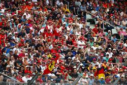 Fans on the grandstands