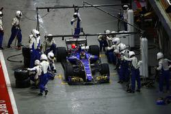 Pascal Wehrlein, Sauber C36-Ferrari au stand