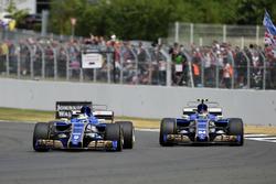 Marcus Ericsson, Sauber C36 et Pascal Wehrlein, Sauber C36
