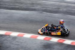 Даниил Квят, Red Bull Racing на картинге