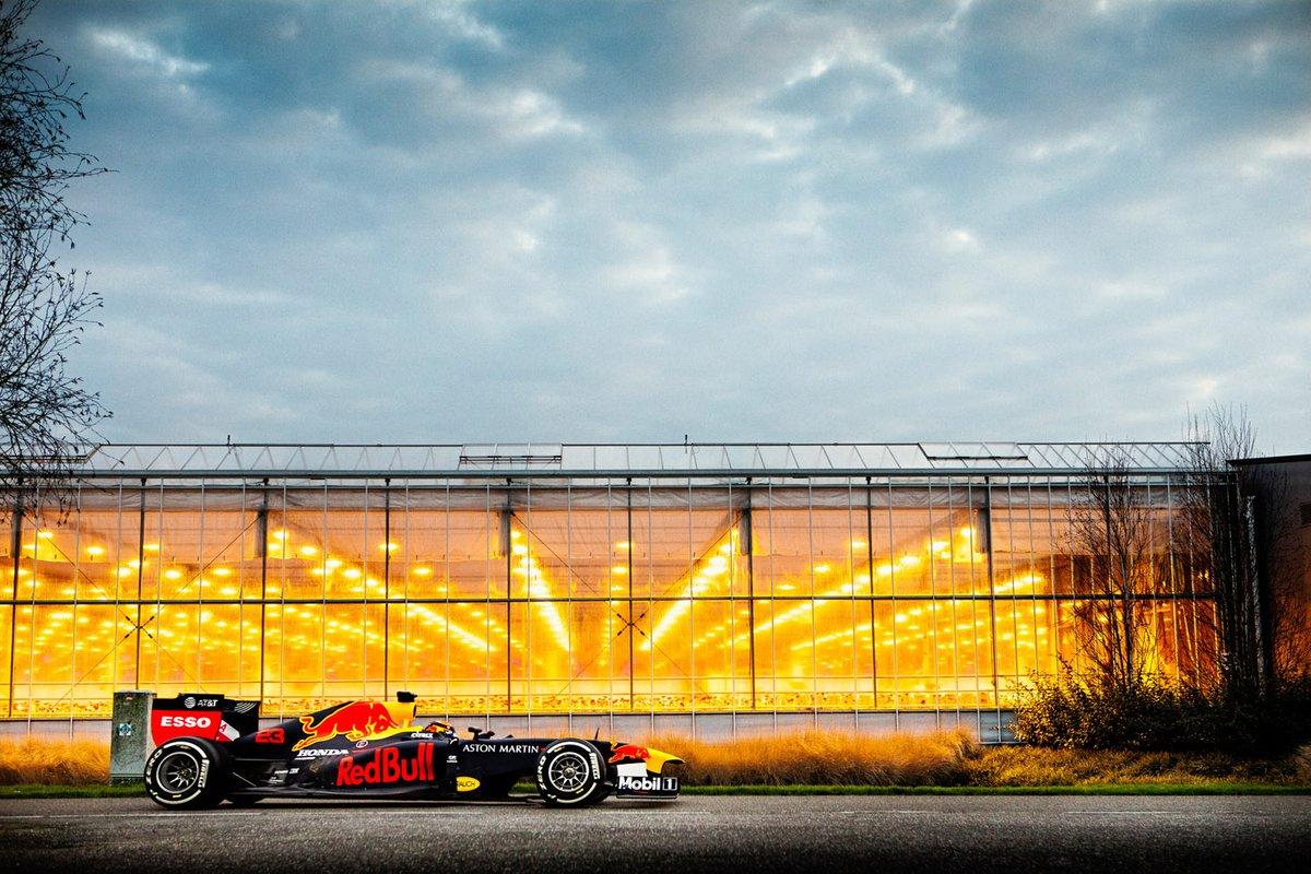 Red Bull Hollanda gösterisi