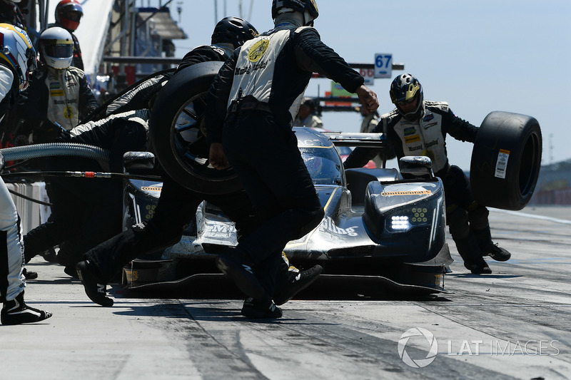 #5 Action Express Racing Cadillac DPi, P: Filipe Albuquerque, Christian Fittipaldi, Gabby Chaves pit stop