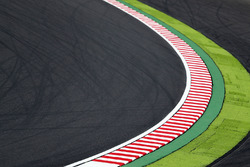 Track View and Kerbs