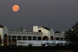 Луна над паддоком