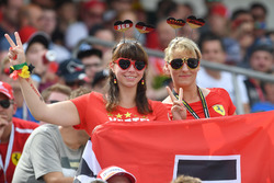 Fans in grandstand