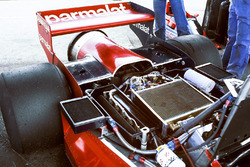 Brabham BT46 Alfa Romeo: der