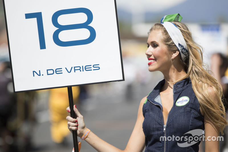 The grid girl of Nyck De Vries, Rapax