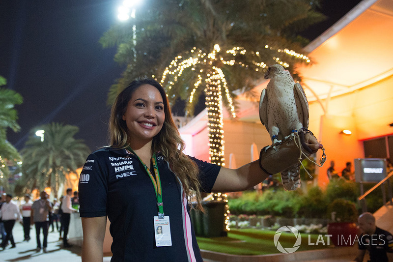 Falcon at Welcome Party