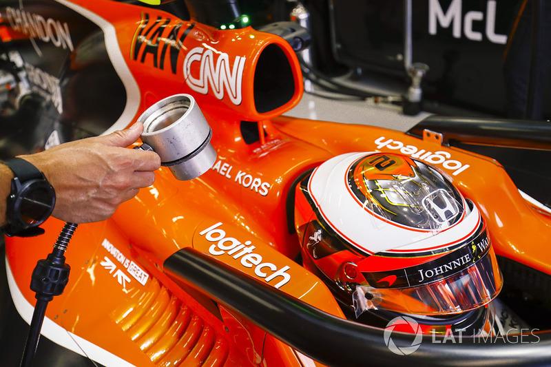 Stoffel Vandoorne, McLaren, mit Halo