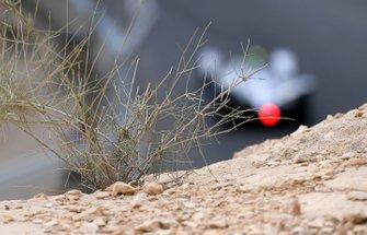 The desert surrounding the track
