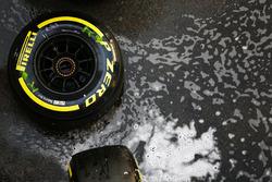 Шина Pirelli у паддоку