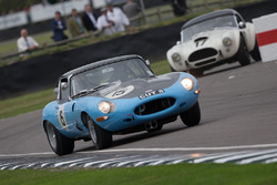 Jaguar E-Type FHC - 1962 - Andrew Newall