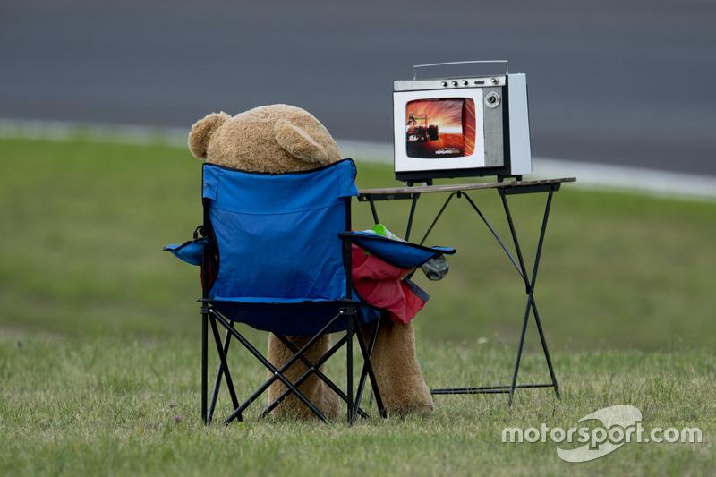 Teddy bear watching the race