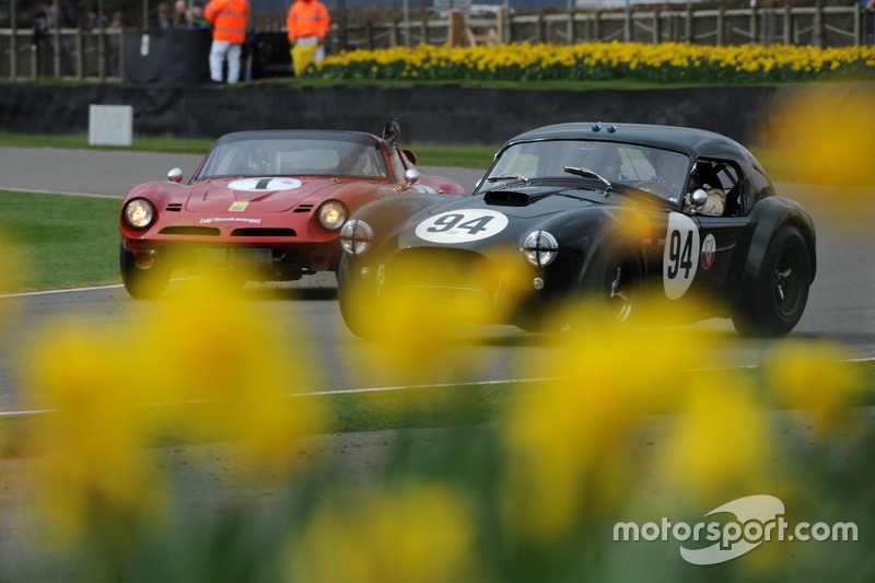 Graham Hill Trophy, Wolfe Gans, Cobra