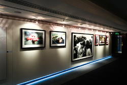 LAT Images and Schlegelmilch gallery
