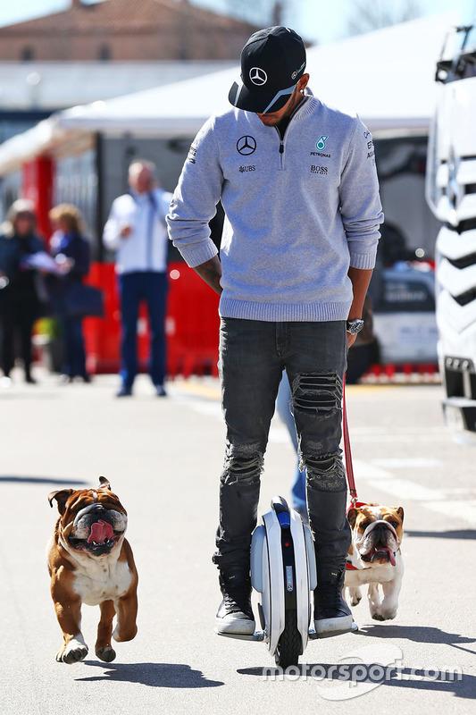 Lewis Hamilton em um passeio pelo paddock com seus cachorros Roscoe e Coco