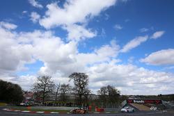 Gordon Shedden, Halfords Yuasa Racing Honda Civic Type R