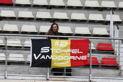 Fan of Stoffel Vandoorne, McLaren