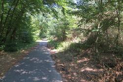 Un paseo por el histórico trazado del Hockenheimring