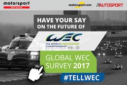 استفتاء بطولة العالم لسباقات التحمّل