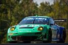 Team Falken Tire to campaign 2012 Porsche GT3 RSR