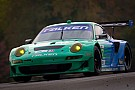 Team Falken Tire adds Porsche driver Nick Tandy for Sebring 12 Hour
