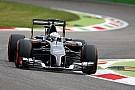 Van der Garde set for second Sauber seat in 2015