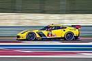 Fässler et Rockenfeller rejoignent Corvette Racing pour Daytona et Sebring