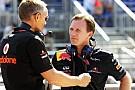 Horner, 'Red Bull Vettel'in arkasında' iddiasını yalanladı