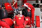 Ferrari Alonso'nun motor hakkı konusunda rahat