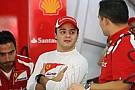 Massa Avrupa GP için çok umutlu